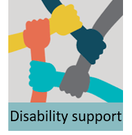 Disabilty support